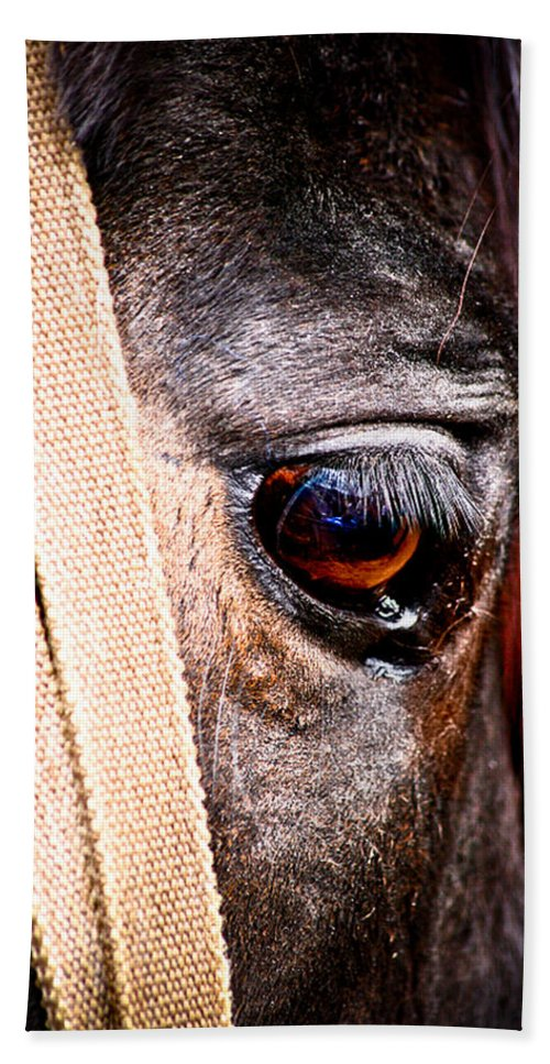 Horse Beach Towel featuring the photograph Horse Tears by Keith Allen