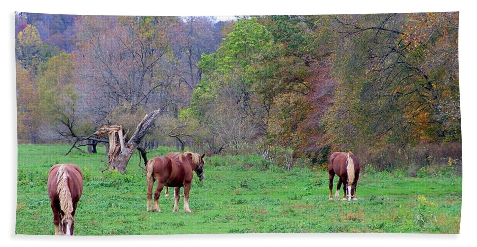 Horses Beach Towel featuring the photograph Horses In Autumn Amish Country by Charlene Cox