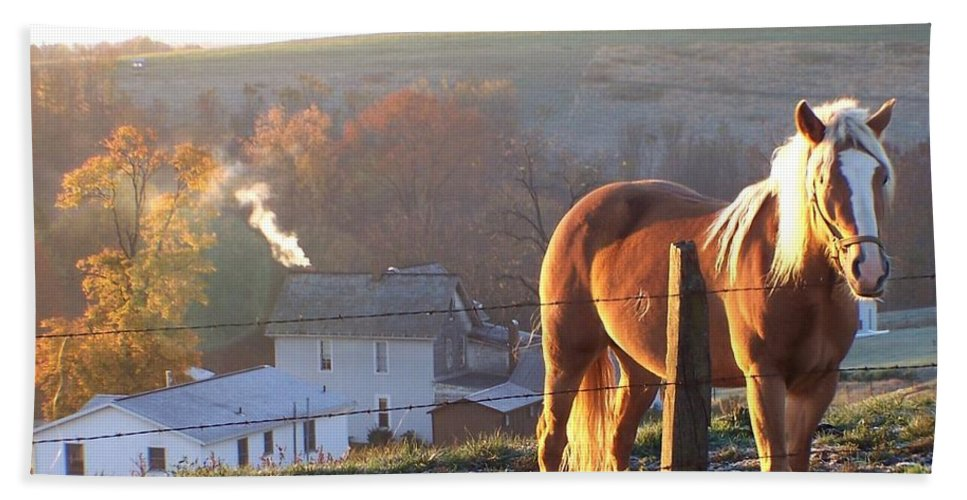 Horses Beach Towel featuring the photograph Horses In Autumn Frosty Sunrise by Charlene Cox