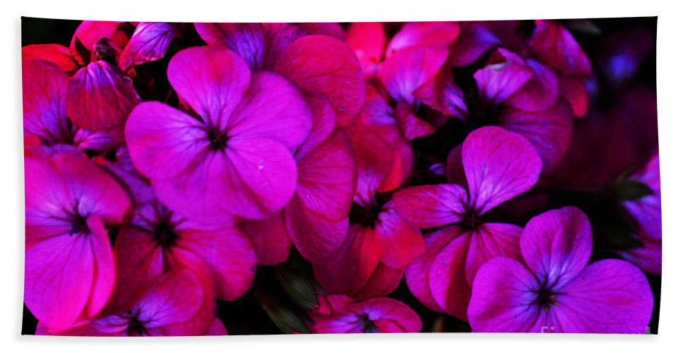 Clay Beach Towel featuring the photograph Hot Pink Florals by Clayton Bruster