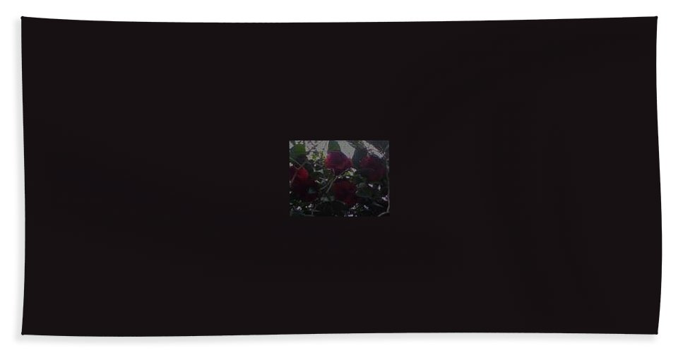 Grace Beach Towel featuring the photograph Huddled Masses by R Chambers