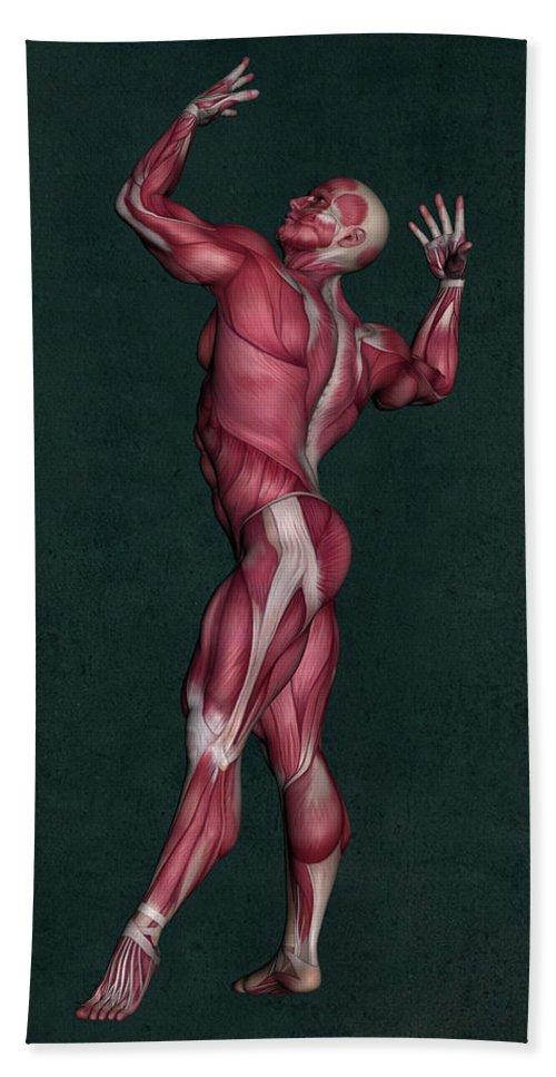 Human Anatomy Beach Towel featuring the mixed media Human Anatomy 16 by Barroa Artworks