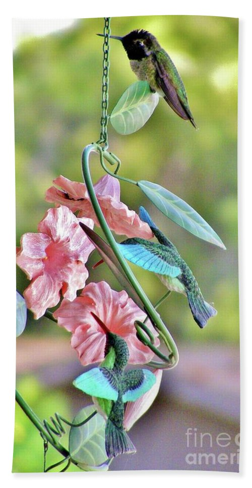 Hummingbirds Beach Towel featuring the photograph Hummer On Hummers by Marilyn Smith