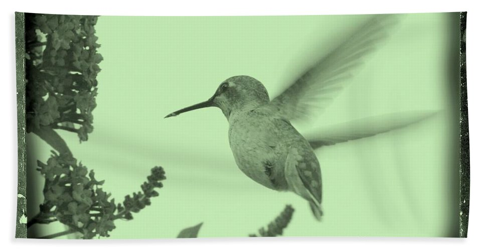 Beach Towel featuring the photograph Hummingbird With Old-fashioned Frame 5 by Carol Groenen