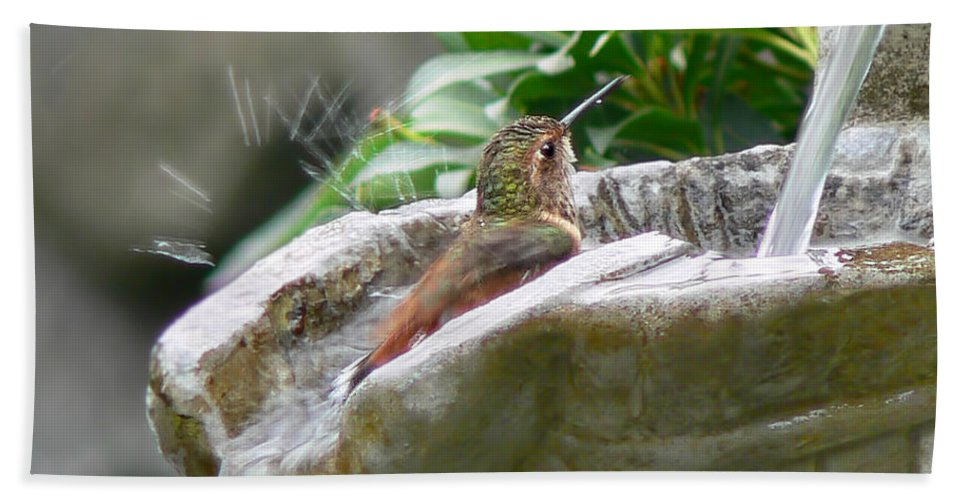 Hummingbird Beach Towel featuring the photograph Hummingbirds Do Take Baths by Jennie Marie Schell