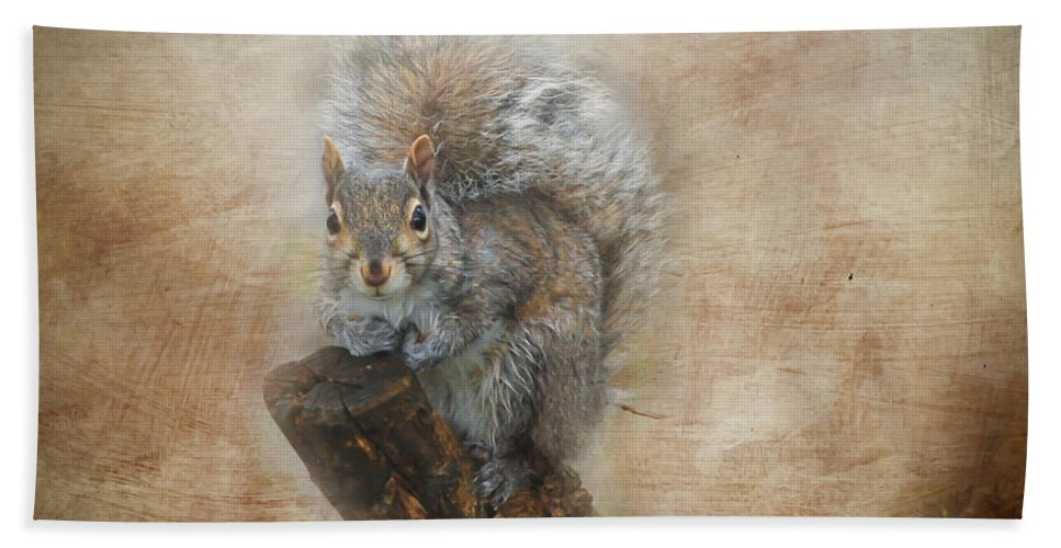 Squirrel Beach Towel featuring the photograph I Have A Secret by Kerri Farley