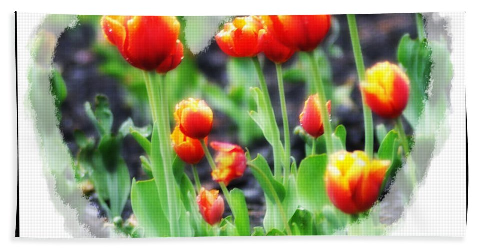 Heart Beach Towel featuring the photograph I Heart Tulips by Bill Cannon