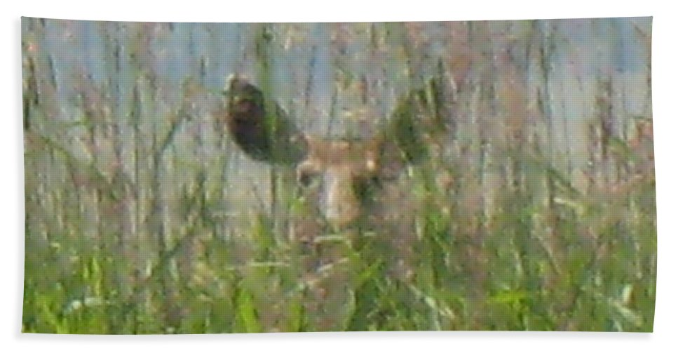 Wildlife Beach Towel featuring the photograph I See You by Darren Rudd