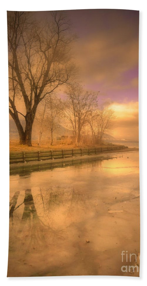 Tree Beach Towel featuring the photograph Ice And Light by Tara Turner