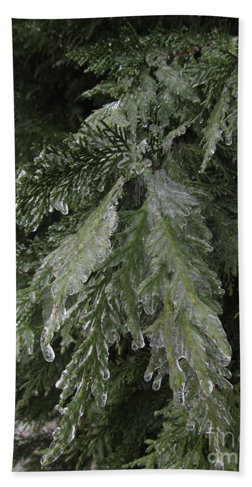Ice Beach Towel featuring the photograph Ice by Donna Brown
