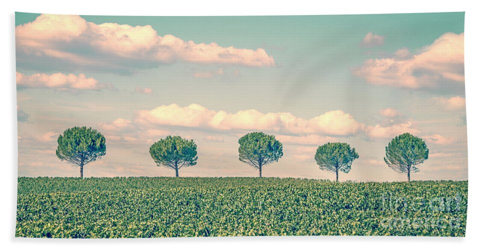 Tree Beach Towel featuring the photograph In A Row by Delphimages Photo Creations