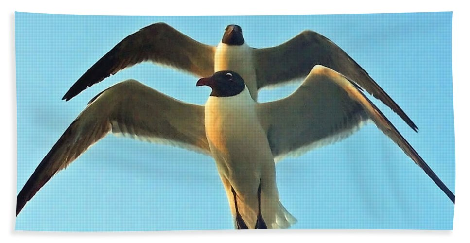 Seagulls Beach Towel featuring the photograph In Tandem At Sunset by Sandi OReilly