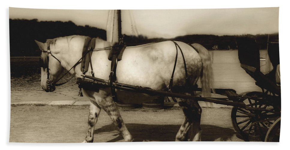 Horse Beach Towel featuring the photograph In The Cool Of The Evening by RC DeWinter
