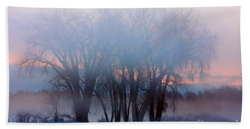 Fog Beach Towel featuring the photograph In The Fog At Sunrise by James BO Insogna