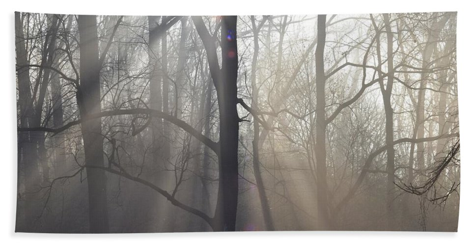 Malvern Beach Towel featuring the photograph In The Morning by Bill Cannon