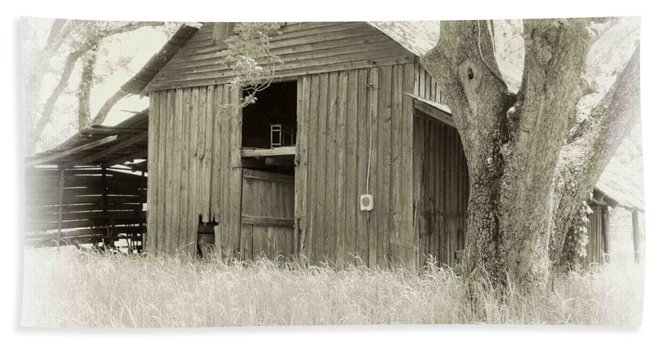 Barn Beach Towel featuring the photograph In The Pecan Orchard by Nelson Strong
