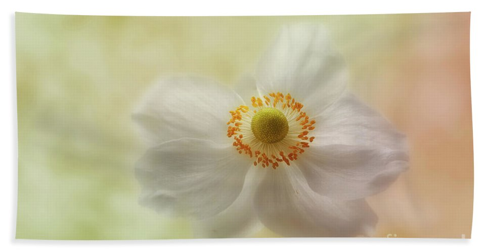 Anemone Beach Towel featuring the photograph In The Whisper Of A Gentle Breeze by John Edwards