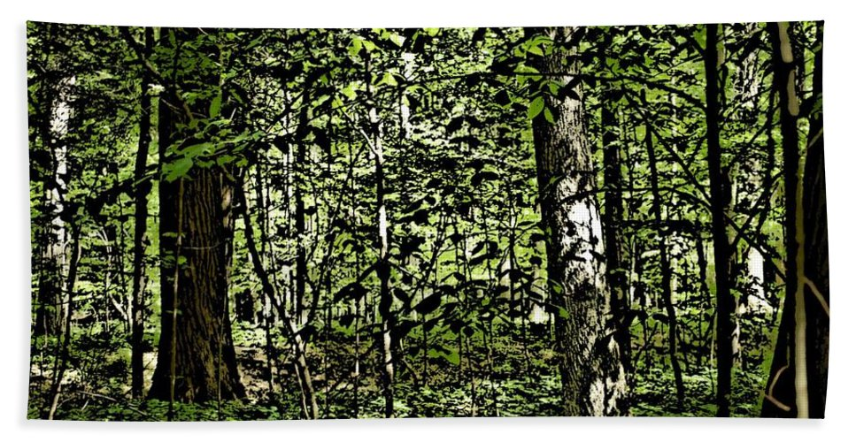 Landscape Beach Sheet featuring the photograph In The Woods Wc by David Lane