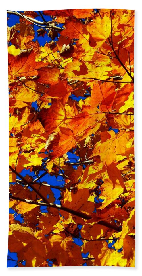 North America Beach Towel featuring the photograph Indian Summer ... by Juergen Weiss