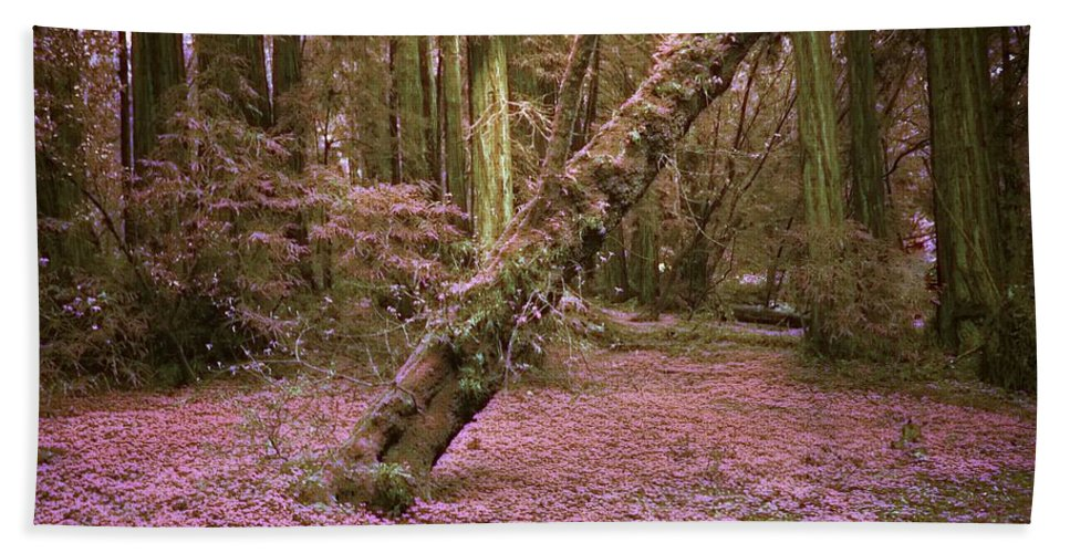 Photography By Suzanne Stout Beach Towel featuring the photograph Infrared Forest Floor by Suzanne Stout