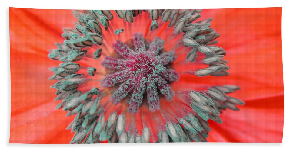 Poppy Beach Towel featuring the photograph Inner Poppy by Steven Scanlon