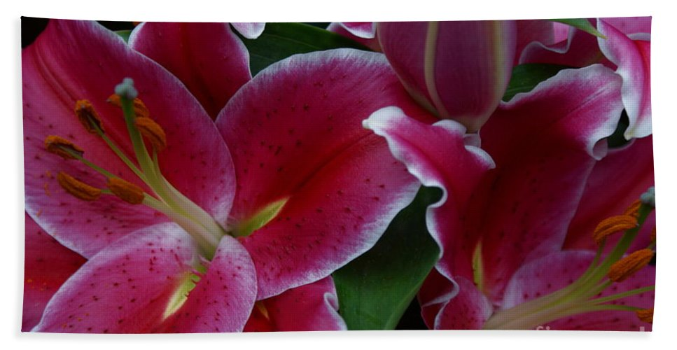 Lilies Beach Towel featuring the photograph Intimate by Joanne Smoley