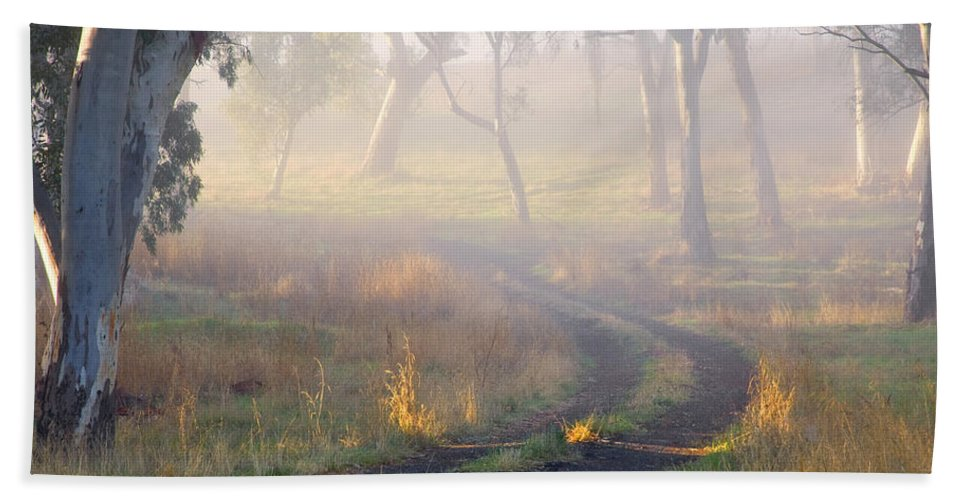 Mist Beach Sheet featuring the photograph Into The Mist by Mike Dawson