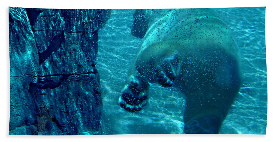 Beach Towel featuring the photograph Into The Wild Blue by Steve Karol