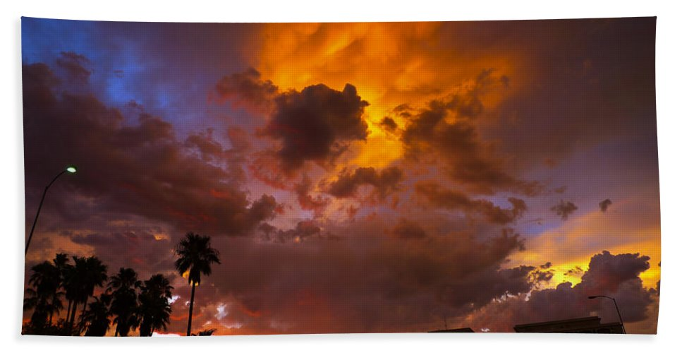 Intuition Beach Towel featuring the photograph Intuition by Skip Hunt