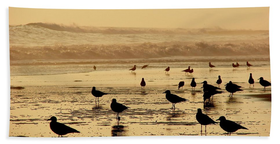 Iquique Beach Towel featuring the photograph Iquique Chile Seagulls by Brett Winn