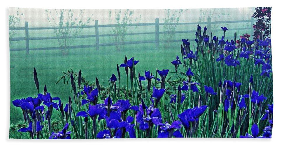 Iris Beach Towel featuring the photograph Irises At Dawn 3 by Sarah Loft