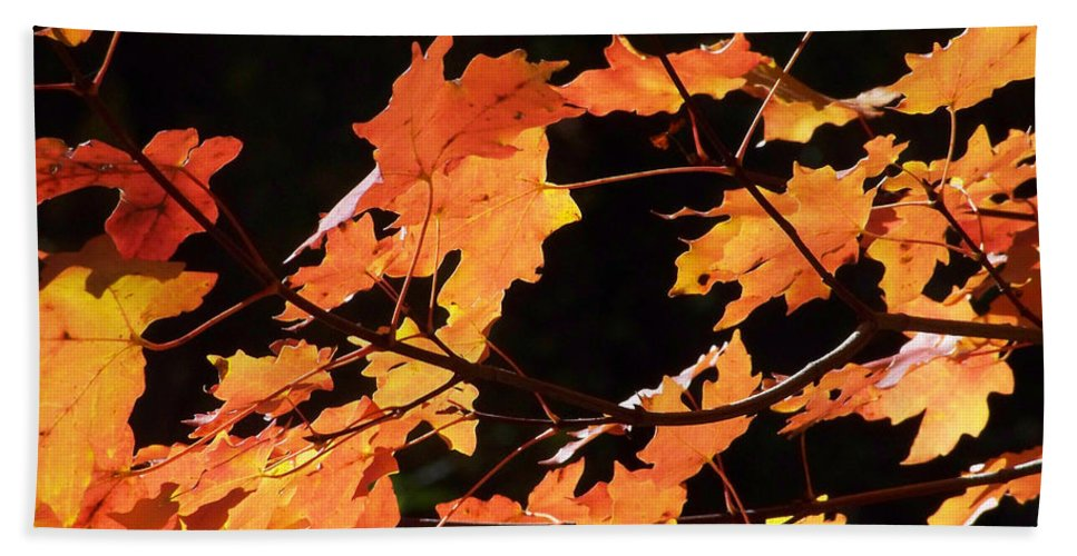 Creeks Beach Towel featuring the photograph It's Fall by Kathy McClure