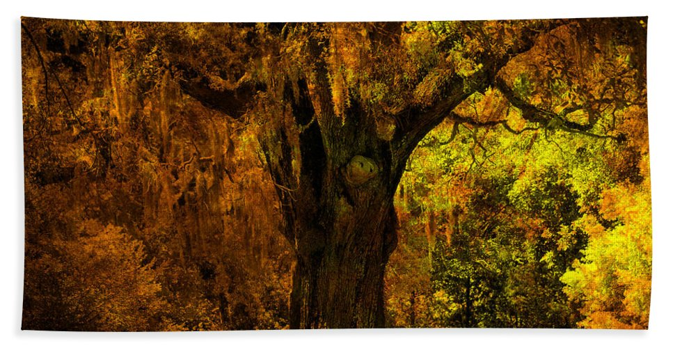 Old Tree Beach Towel featuring the photograph It's not the Angel Oak by Susanne Van Hulst