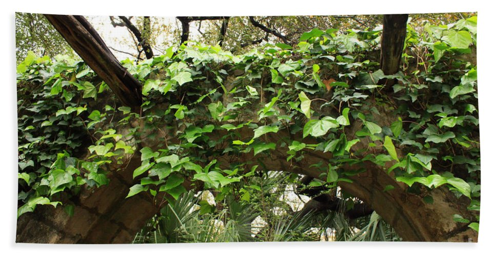Ivy-covered Beach Towel featuring the photograph Ivy-covered Arch At The Alamo by Carol Groenen