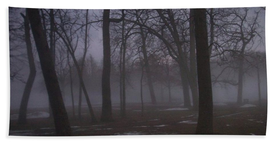 January Beach Towel featuring the photograph January Fog 2 by Anita Burgermeister