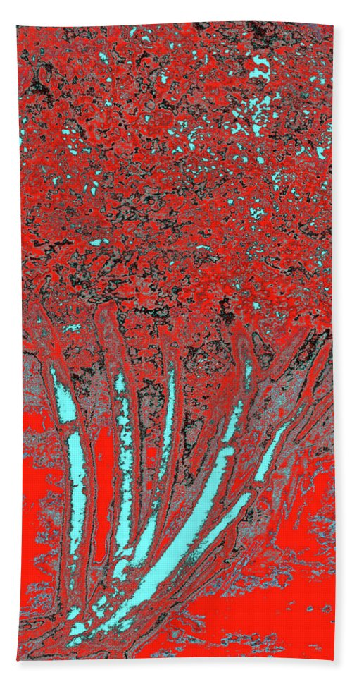 Trees Beach Towel featuring the photograph Jelks Fingerling 16 by Gary Bartoloni
