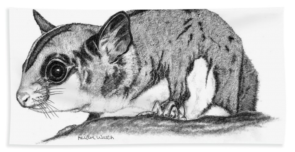 Sugar Glider Beach Towel featuring the drawing Joey by Kristen Wesch