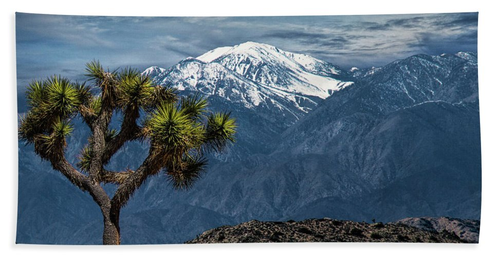 California Beach Towel featuring the photograph Joshua Tree At Keys View In Joshua Park National Park by Randall Nyhof