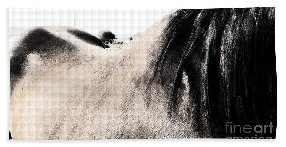 Horse Beach Towel featuring the photograph Jump On by LKB Art and Photography