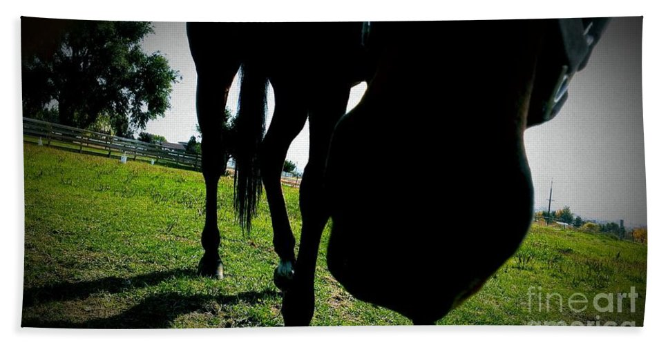 Horses Beach Towel featuring the photograph Just Let Me Smell It by LKB Art and Photography
