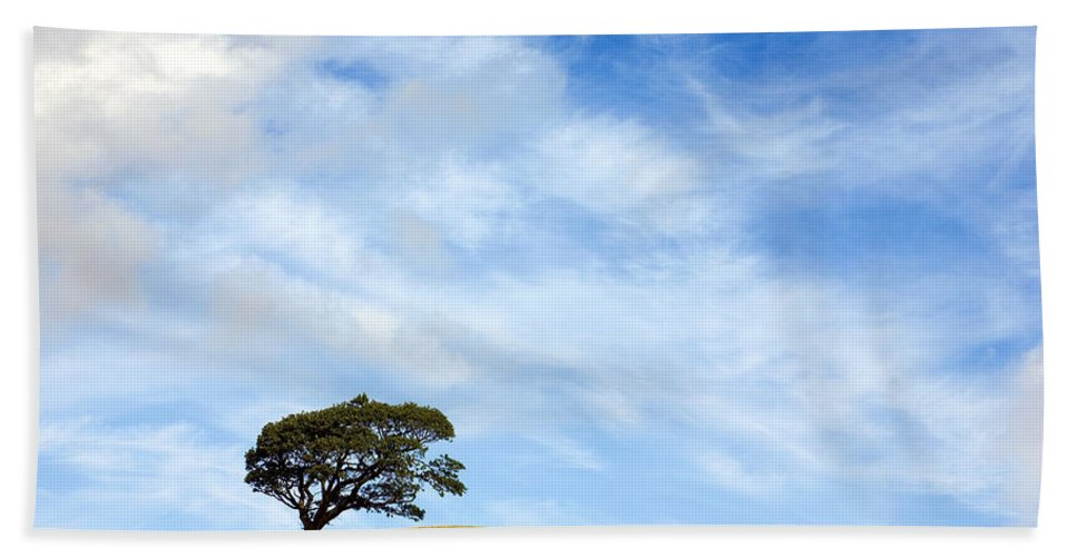Landscape Beach Towel featuring the photograph Just One Tree Hill by Mal Bray