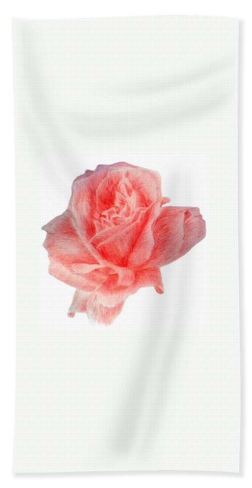 Drawing Flower Rose Colored Pensils Paper Beach Towel featuring the drawing Just Rose by Nadi Sabirova