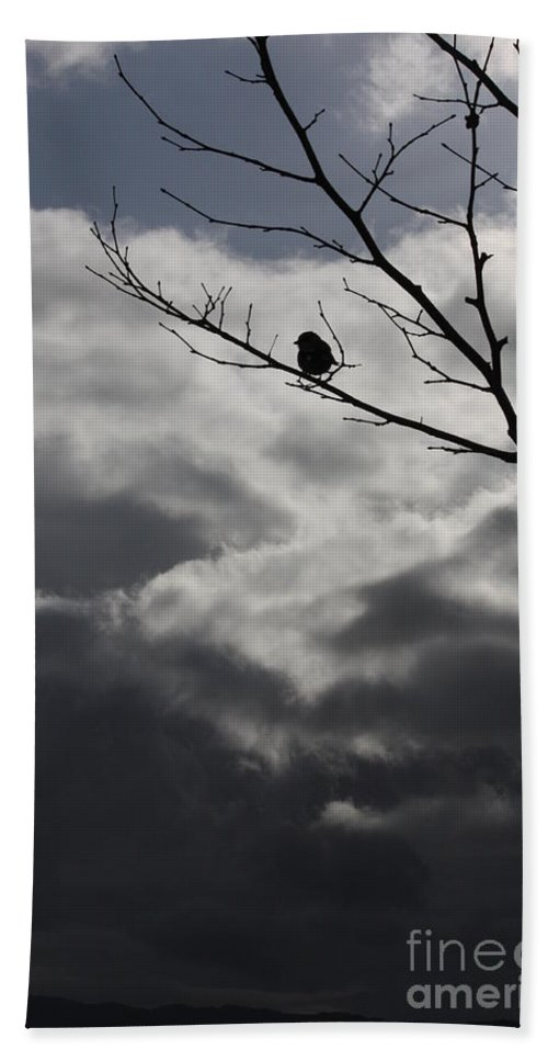 Storm Beach Towel featuring the photograph Keeping Above The Storm by Carol Groenen