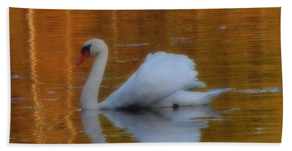 Swan Beach Towel featuring the photograph Kensingtons Swan 1 by September Stone