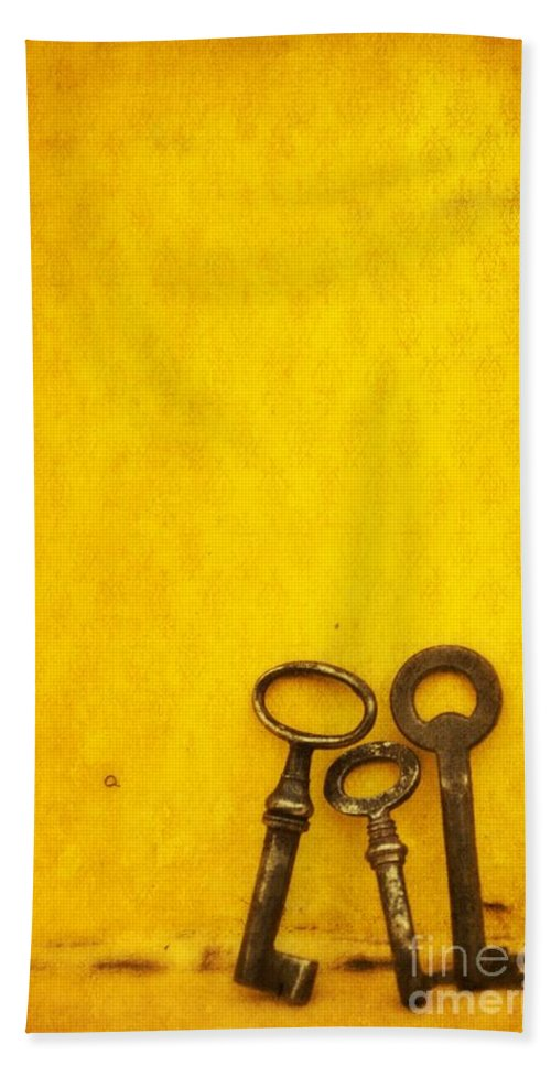 Keys Beach Towel featuring the photograph Key Family by Priska Wettstein