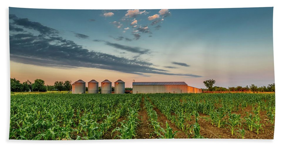 Ruralscape Beach Towel featuring the photograph Knee High Sweet Corn by Steven Sparks