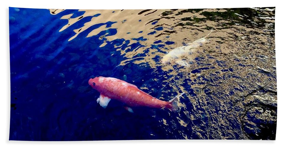 Koi Fish Pond Lake Water Nature Blue Gold Animals Colors Beach Towel featuring the photograph Koi On Blue And Gold by Russell Keating