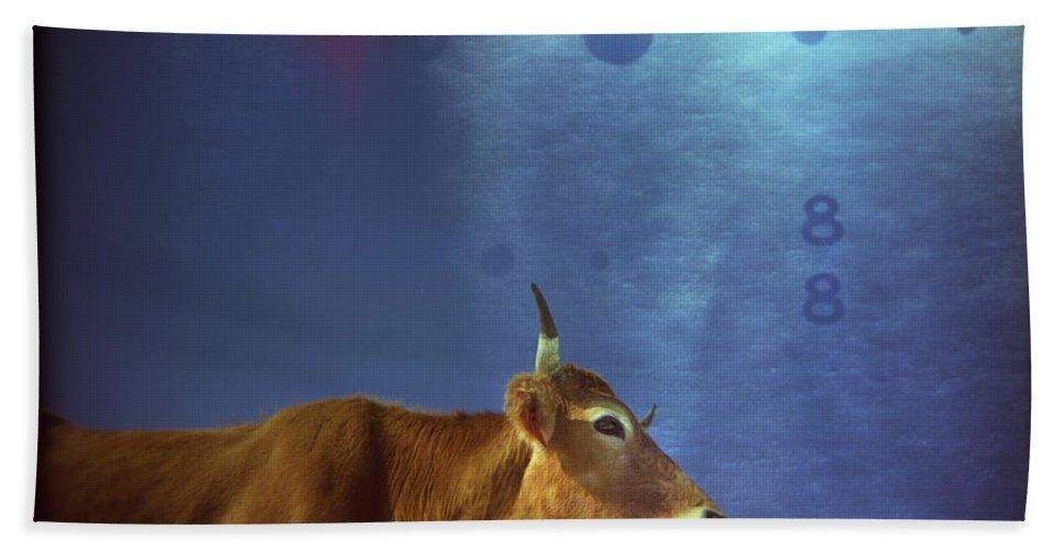 Cow Beach Towel featuring the photograph La Vache Numerique by Rafa Rivas