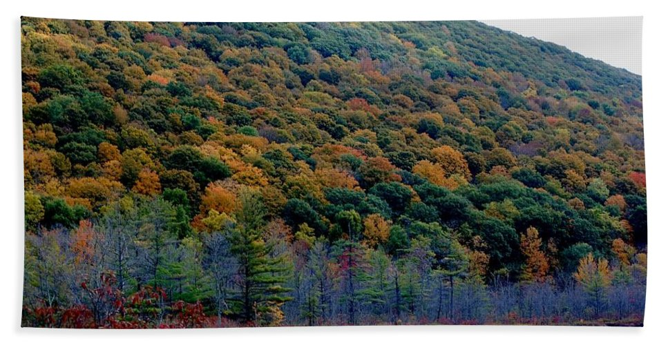 Digital Photograph Beach Towel featuring the photograph Labrador Pond Hillside by David Lane