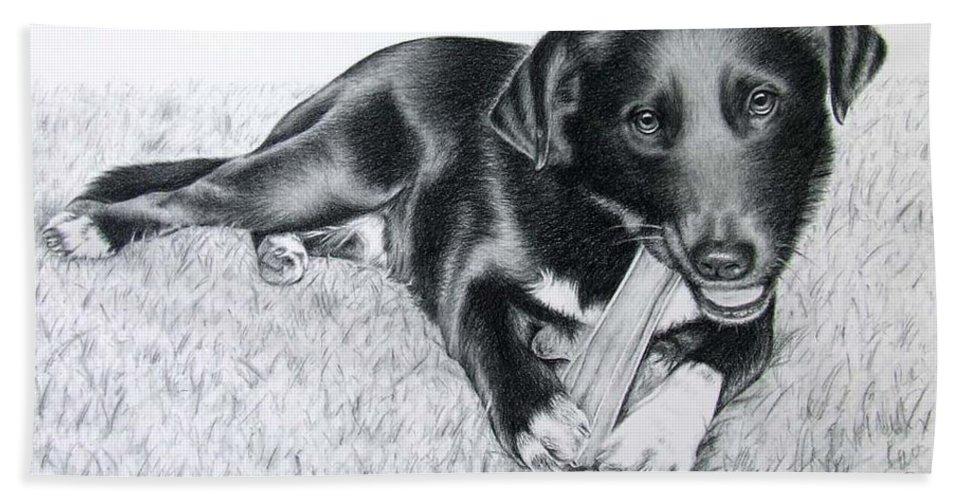 Dog Beach Sheet featuring the drawing Labrador Samy by Nicole Zeug